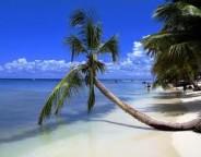 República Dominicana 2