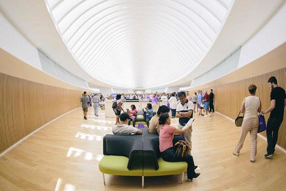 biblioteca-sin-libros