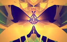 Imago mariposa