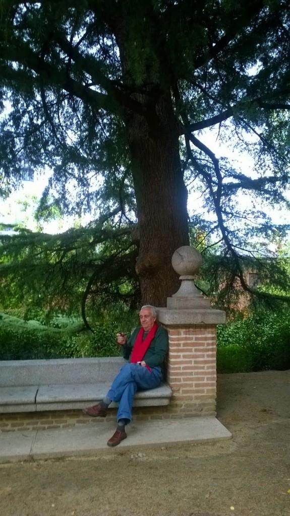 Carlos Penelas árbol