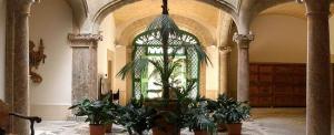 patio interior con plantas